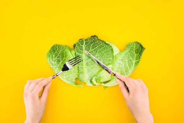 Lövés személy egészségesen enni káposzta izolált citromsárga Stock fotó © LightFieldStudios