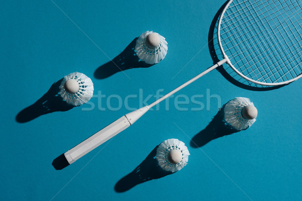 badminton equipment Stock photo © LightFieldStudios