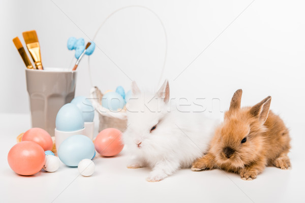 cute furry rabbits and painted easter eggs on white Stock photo © LightFieldStudios