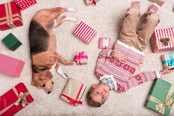 мальчика Beagle собака Рождества подарки Top Сток-фото © LightFieldStudios