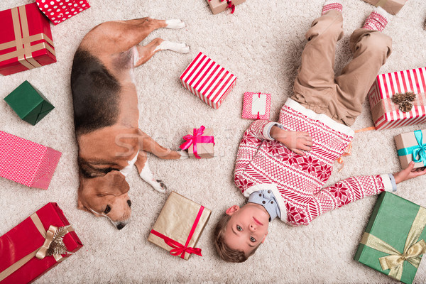 Ragazzo beagle cane Natale regali top Foto d'archivio © LightFieldStudios