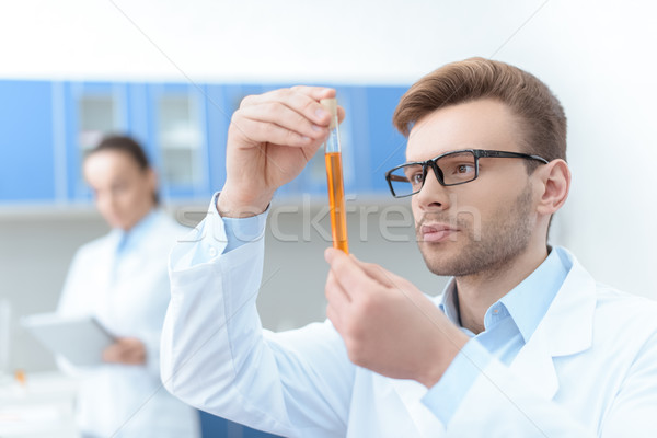 Man scientist in eyeglasses and white coat examining test tube with reagent in lab Stock photo © LightFieldStudios