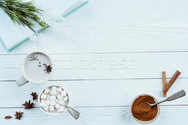 ароматический какао книга анис звезды Сток-фото © LightFieldStudios