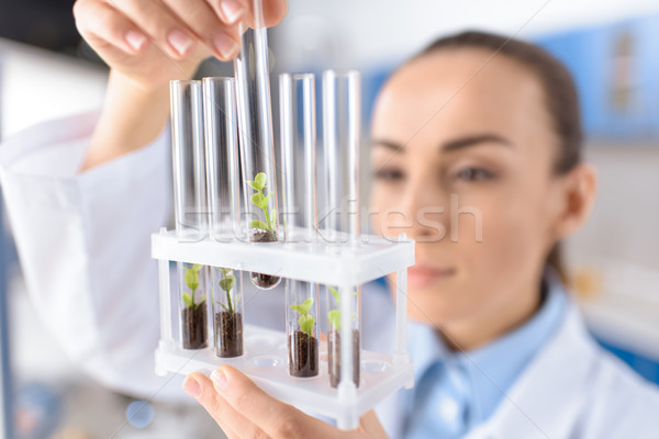 scientist holding laboratory tubes, focus on foreground Stock photo © LightFieldStudios