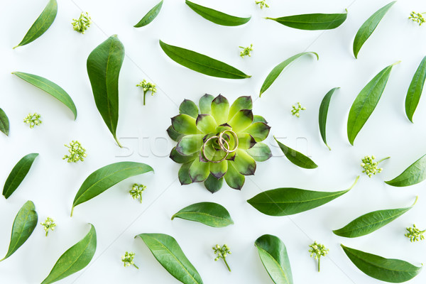 Close-up view of beautiful wedding composition with golden rings and green leaves, , wedding invitat Stock photo © LightFieldStudios