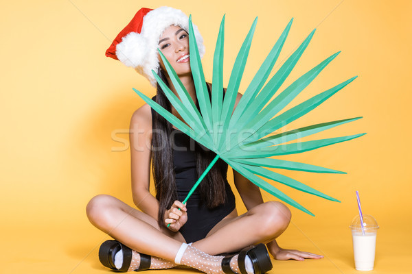 Woman in santa hat with palm leaf Stock photo © LightFieldStudios