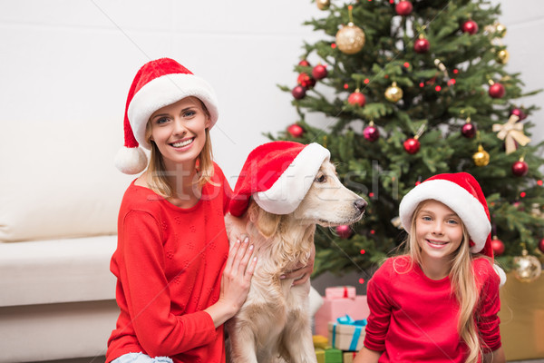Stock photo: family with dog in Santa hats