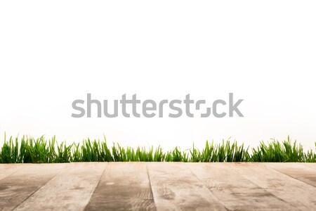 wooden planks and sward Stock photo © LightFieldStudios