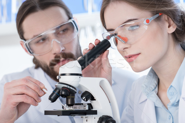 Travail microscope portrait jeunes professionnels science Photo stock © LightFieldStudios