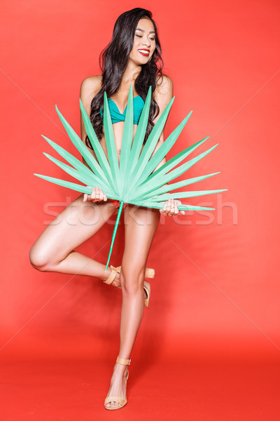 Stock photo: woman in swimsuit with palm leaf