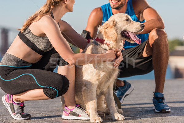 Sport paar hond golden retriever stad dag Stockfoto © LightFieldStudios