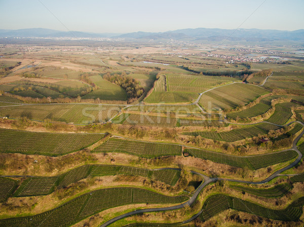 Aerial view of landscape with green fields on tiers, Germany Stock photo © LightFieldStudios