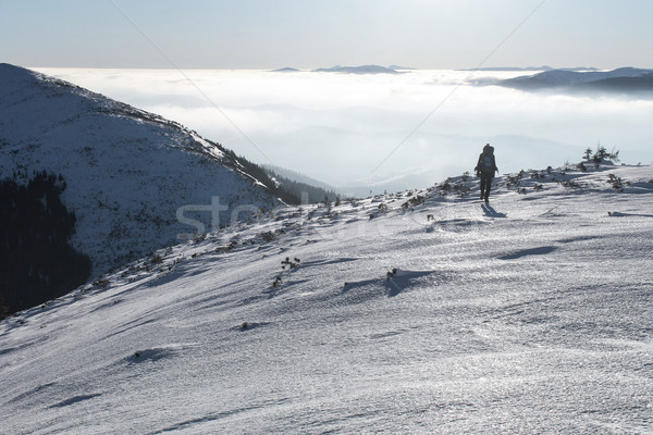 hiker walking on beautiful snowy mountains, Carpathian Mountains, Ukraine Stock photo © LightFieldStudios