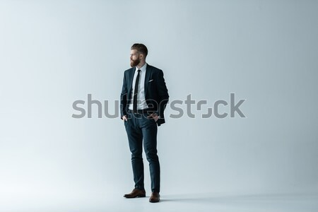 Handsome bearded businessman in stylish suit standing with hands in pockets on grey Stock photo © LightFieldStudios