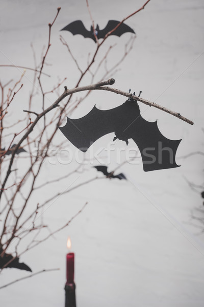 decorative bats on dry branches Stock photo © LightFieldStudios