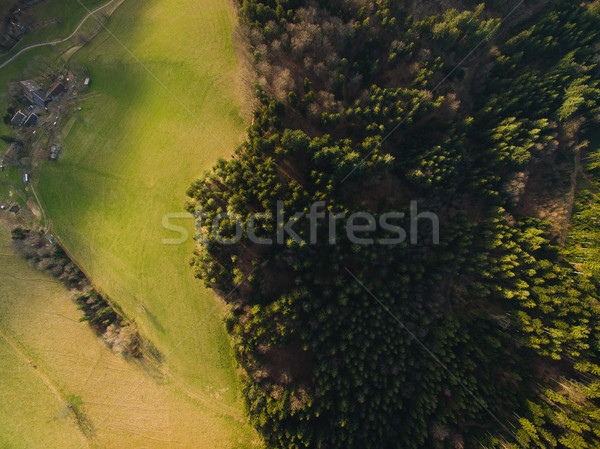Aerial view of green field and forest, Germany Stock photo © LightFieldStudios