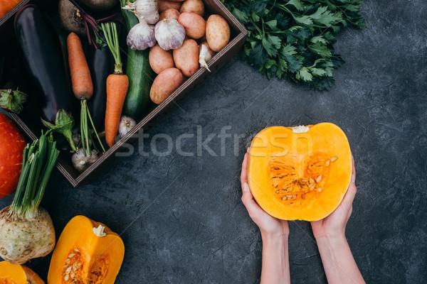Zucca mani shot maturo autunno verdura Foto d'archivio © LightFieldStudios
