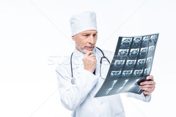 Doktor bakıyor xray olgun erkek doktor yalıtılmış Stok fotoğraf © LightFieldStudios