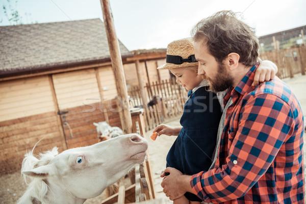 Familie ponei grădină zoologică vedere laterala fetita Imagine de stoc © LightFieldStudios