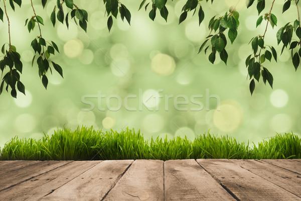 green leaves, sward and wooden planks Stock photo © LightFieldStudios