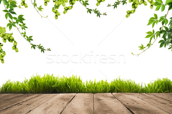 green leaves, sward and wooden planks Stock photo © LightFieldStudios