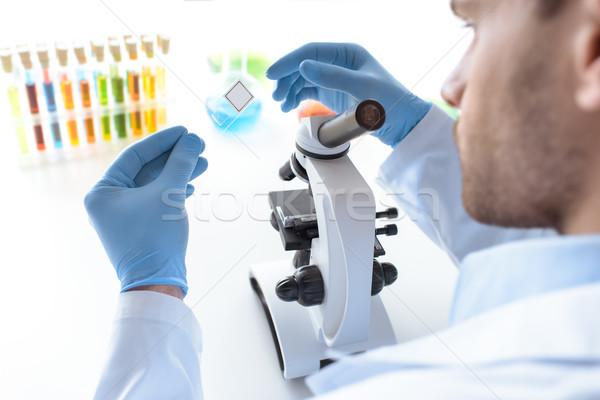 Científico de trabajo microscopio laboratorio ciencia laboratorio Foto stock © LightFieldStudios