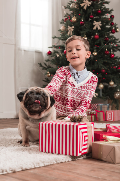 boy with cute pug on christmas Stock photo © LightFieldStudios