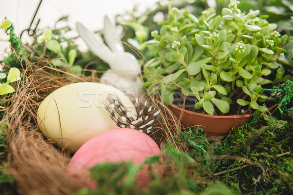 Plant and Easter eggs Stock photo © LightFieldStudios