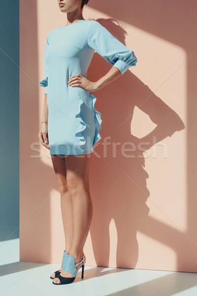 Vrouw modieus turkoois jurk shot mooie vrouw Stockfoto © LightFieldStudios