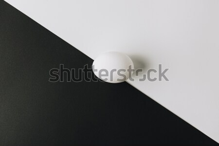 white egg laying in middle of black and white background  Stock photo © LightFieldStudios