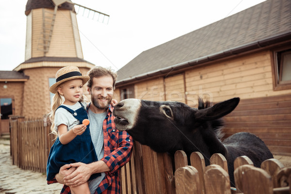 family feeding donkey in zoo Stock photo © LightFieldStudios