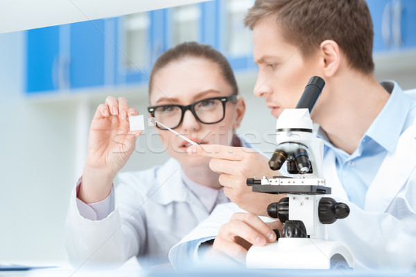 Concentrated young chemists working with glass microscope slide in lab Stock photo © LightFieldStudios