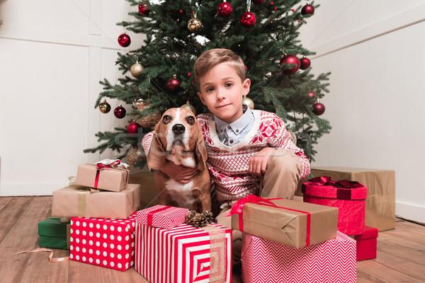 Stock photo: boy with dog under christmas tree