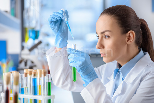 side view of concentrated scientist working with laboratory tube Stock photo © LightFieldStudios