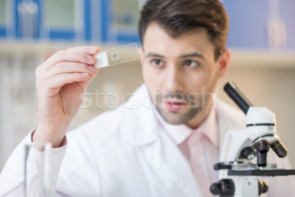Man scientist in white coat looking at glass microscope slide in lab  Stock photo © LightFieldStudios