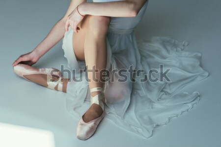 Vue sensuelle femme transparent robe isolé Photo stock © LightFieldStudios