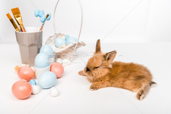 adorable furry rabbit and painted easter eggs on white Stock photo © LightFieldStudios