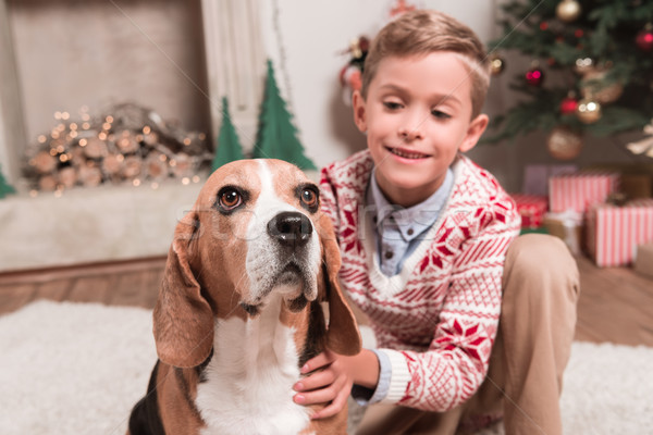 boy with beagle dog on christmas Stock photo © LightFieldStudios