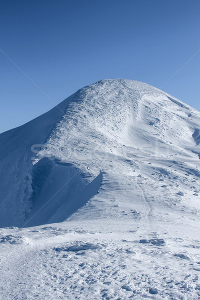 scenic view of peak of Hoverla mountain covered with snow, Carpathian Mountains, Ukraine Stock photo © LightFieldStudios