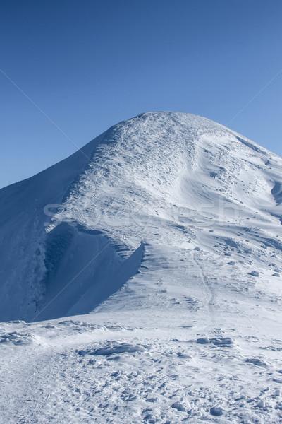 Sceniczny widoku szczyt górskich pokryty śniegu Zdjęcia stock © LightFieldStudios