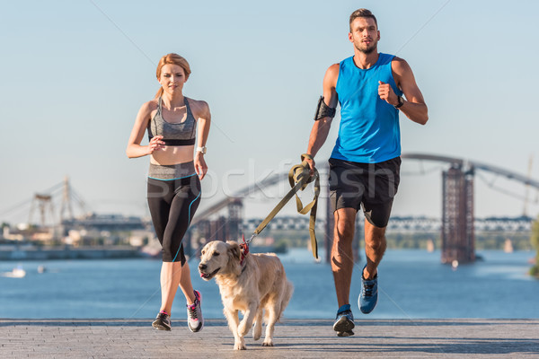 sports couple jogging with dog Stock photo © LightFieldStudios