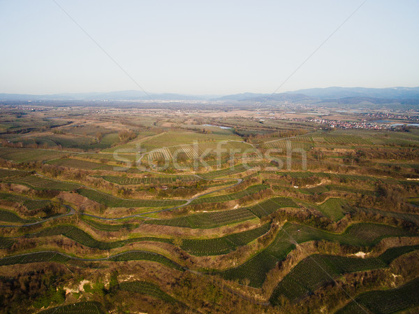 Aerial view of green fields on tiers, Germany Stock photo © LightFieldStudios