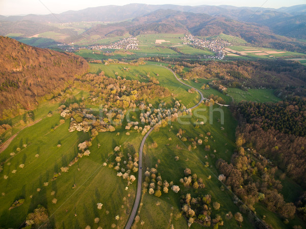 Aerial view of landscape with green hills, trees and road, Germany Stock photo © LightFieldStudios