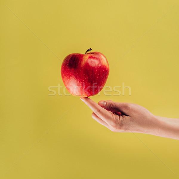 Vrouw appel vinger textuur Stockfoto © LightFieldStudios