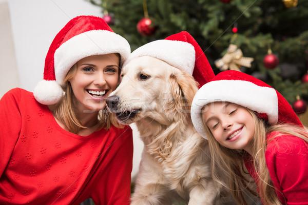mother, daughter and dog in Santa hats Stock photo © LightFieldStudios