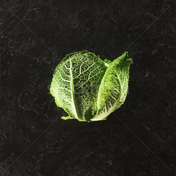 Topo ver fresco saudável orgânico repolho Foto stock © LightFieldStudios