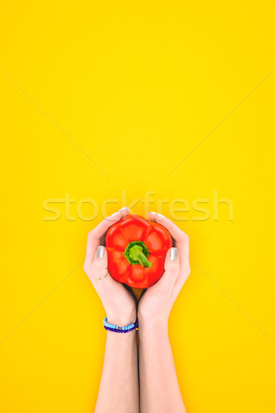 cropped shot of person holding raw red pepper in hands isolated on yellow Stock photo © LightFieldStudios