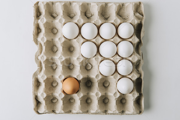 white and one brown egg laying in egg carton on white background     Stock photo © LightFieldStudios