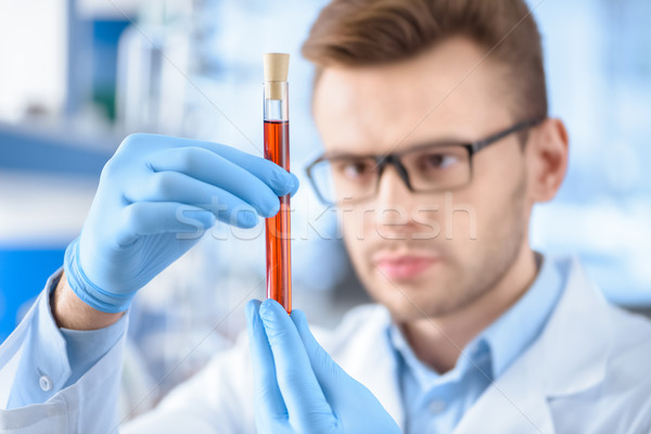 Man scientist in protective gloves holding test tube with reagent Stock photo © LightFieldStudios