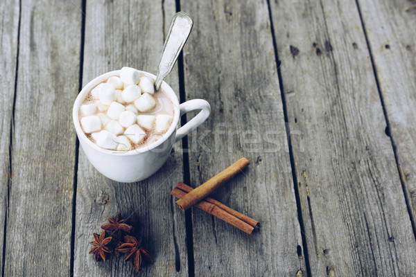 Taza cacao malvavisco vista dulce Foto stock © LightFieldStudios